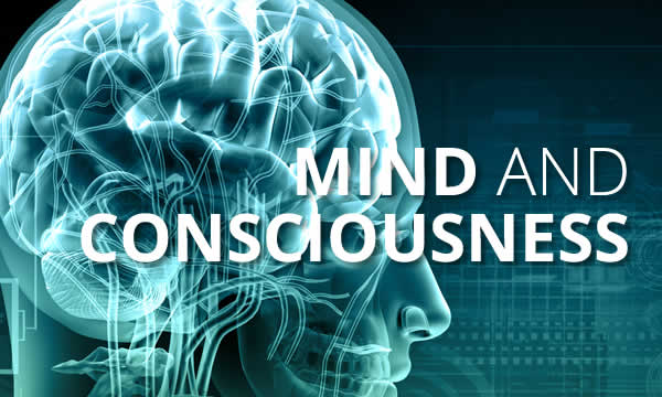 Programme 3 - Mind and Consciousness